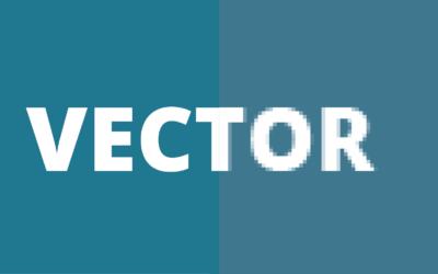 Wat is vector?
